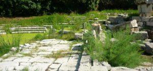 Siracusa, visite guidate gratuite al Ginnasio Romano il 22 e 23 settembre
